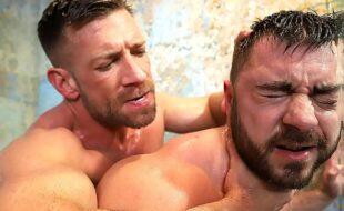 Videos de Porno Sexo Gay comendo viado no banheiro